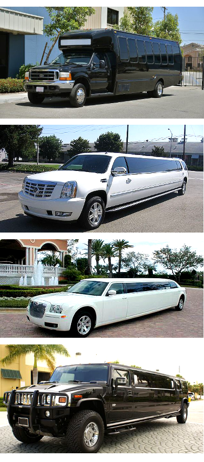 Party Buses and Limos North Carolina